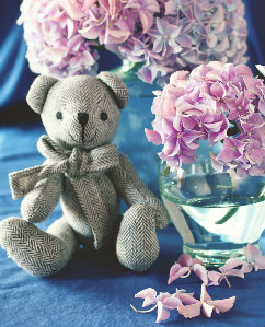 baby-Flowers-Online